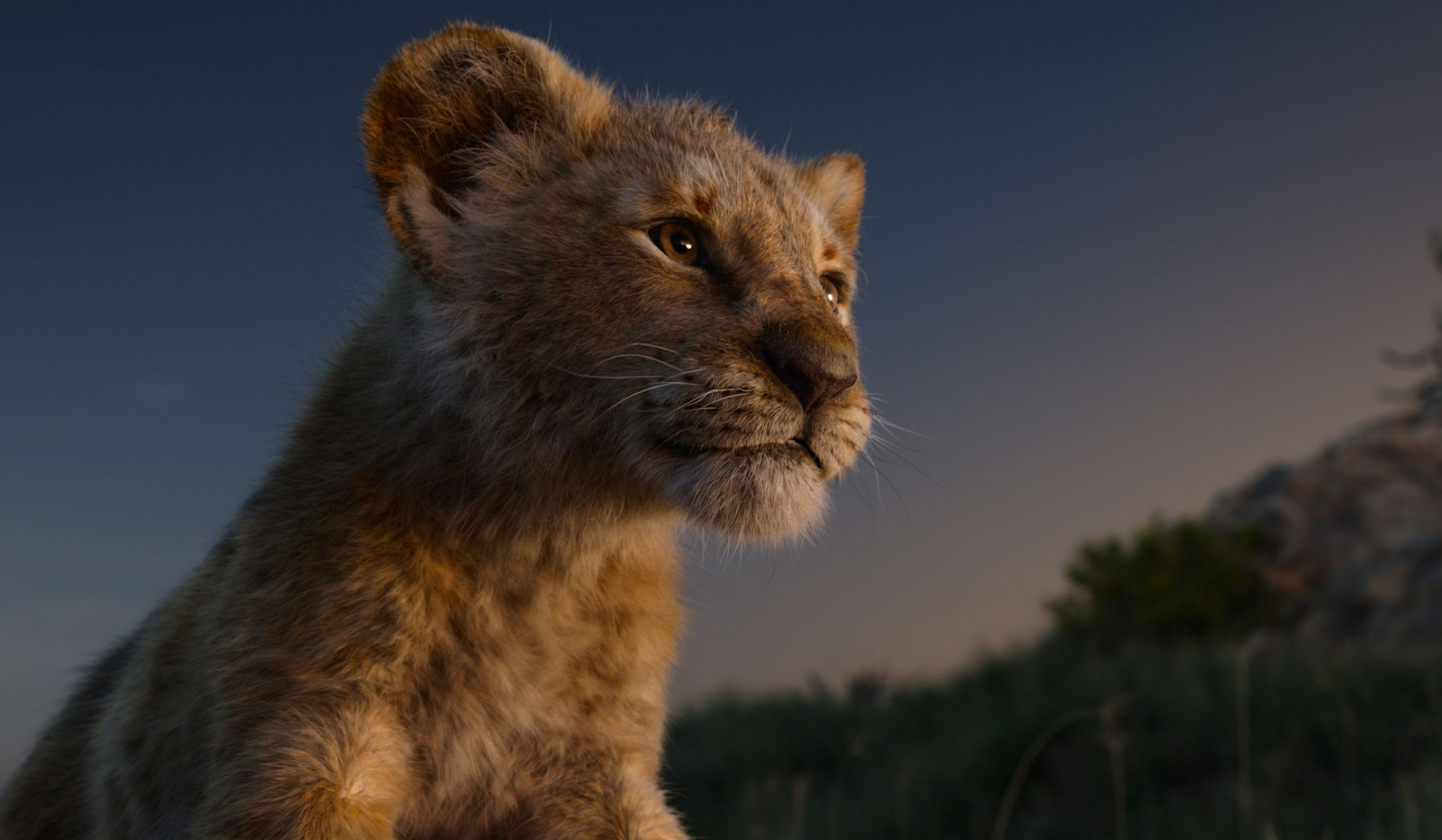 """Young Simba (voice: JD McCrary) in """"The Lion King (2019)."""""""
