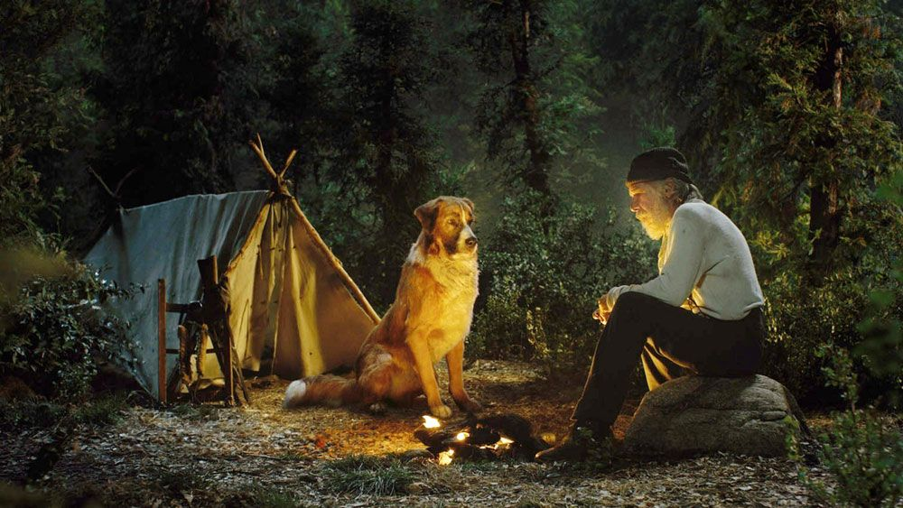 buck-the-dog-harrison-ford-call-of-the-wild