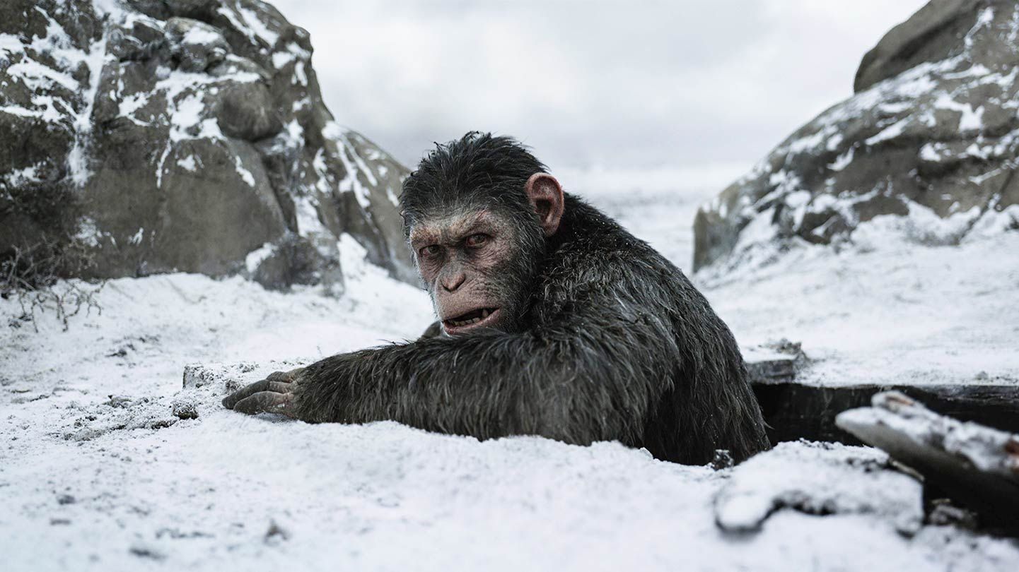 """Caesar in """"War for the Planet of the Apes."""""""