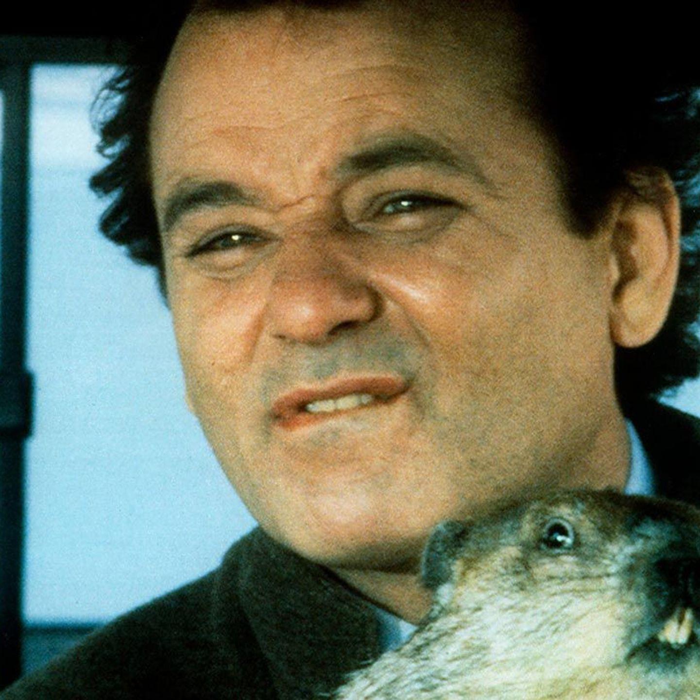 Bill Murray Movies: Groundhog Day