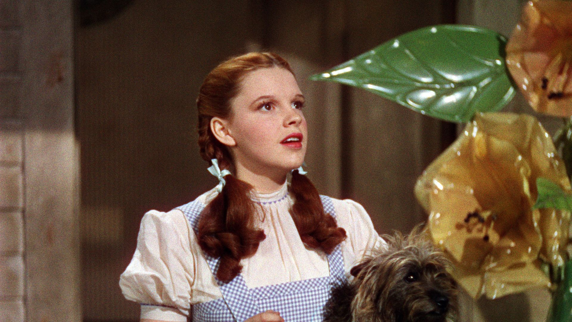 """Judy Garland and Toto in """"The Wizard of Oz."""""""