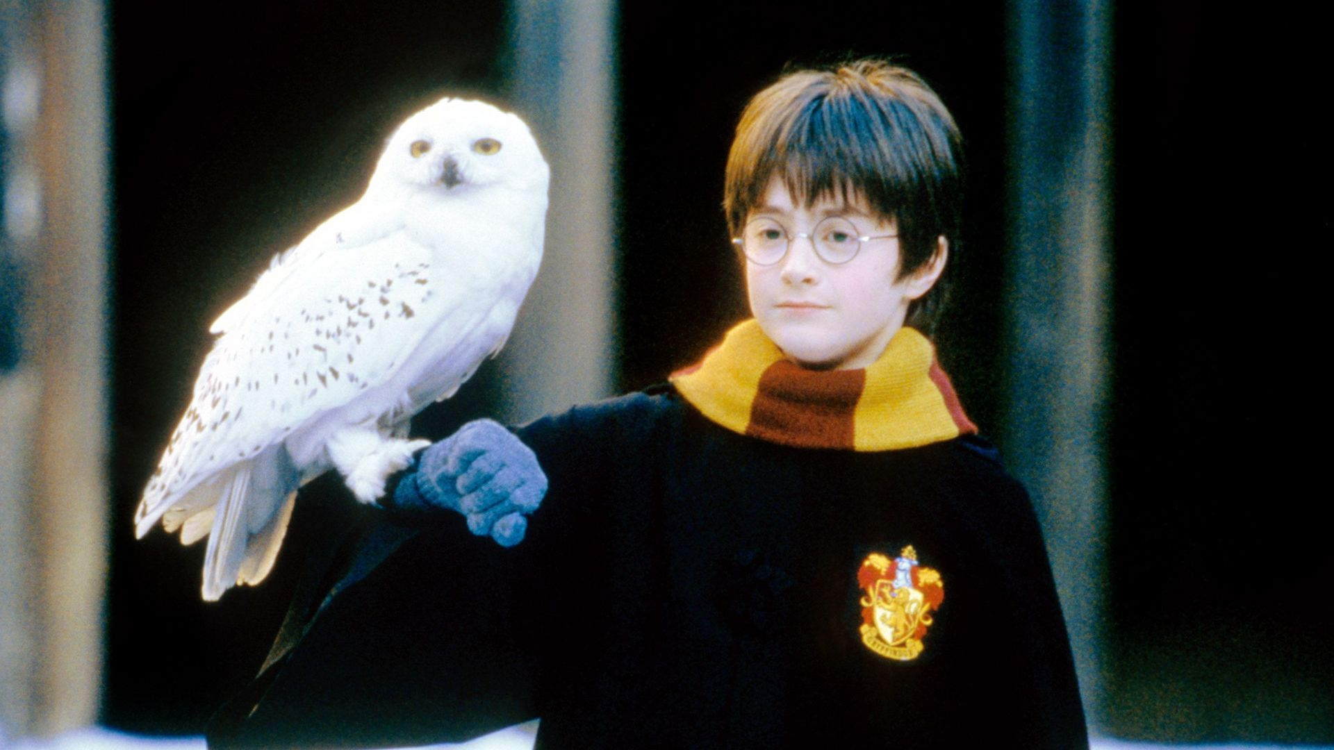 """Daniel Radcliffe in """"Harry Potter and the Sorcerer's Stone."""""""