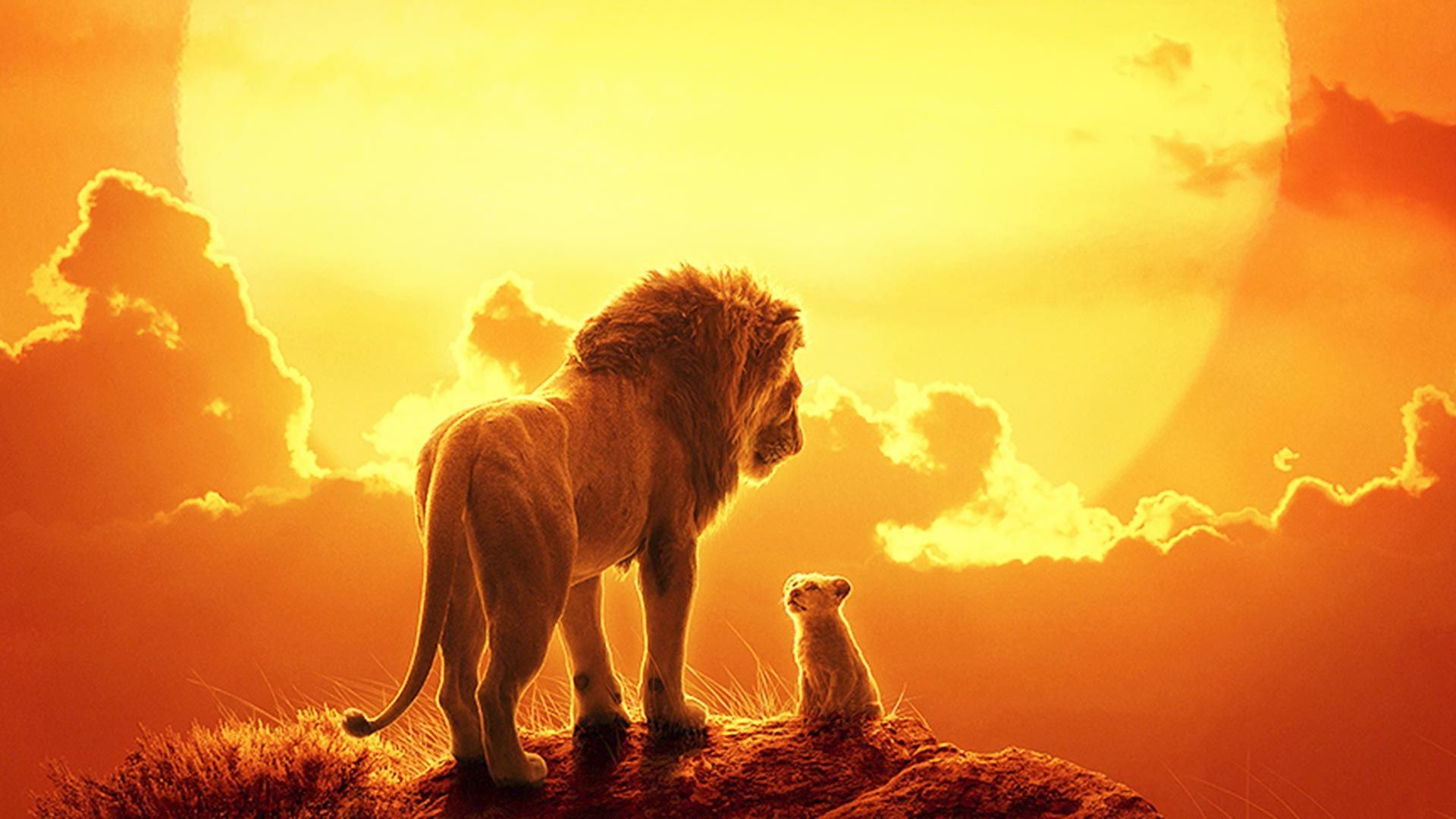 """Key art from """"The Lion King (2019)."""""""